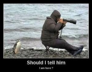 should i tell him
