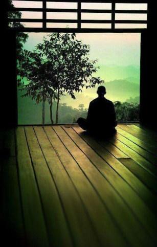 drugs article meditator