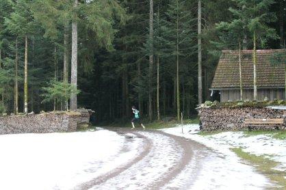 wolfach16 (70)