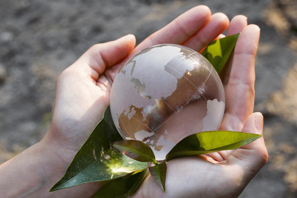 Yenilenebilir Enerji Kaynakları ve Biyogaz, Yenilenebilir Enerji Kaynakları ve Biyogaz, Kadim Hukuk ve Danışmanlık