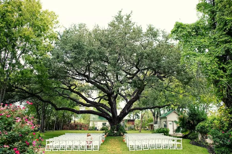 Wedding Ceremony Tree