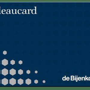 Bijenkorf cadeaukaart (combi) 100,00 euro