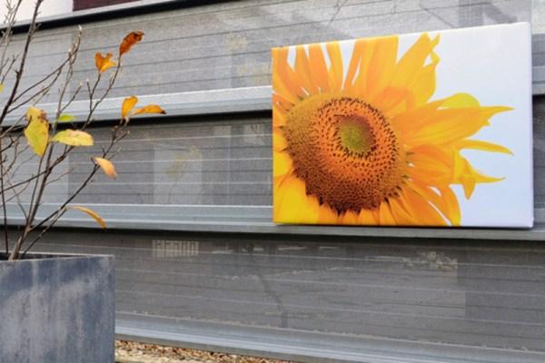 Tuinposter op 4cm frame 30x50 cm