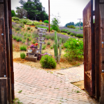 Doors Onto The Paths image
