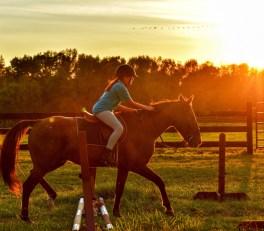 Pige på hest i solnedgang