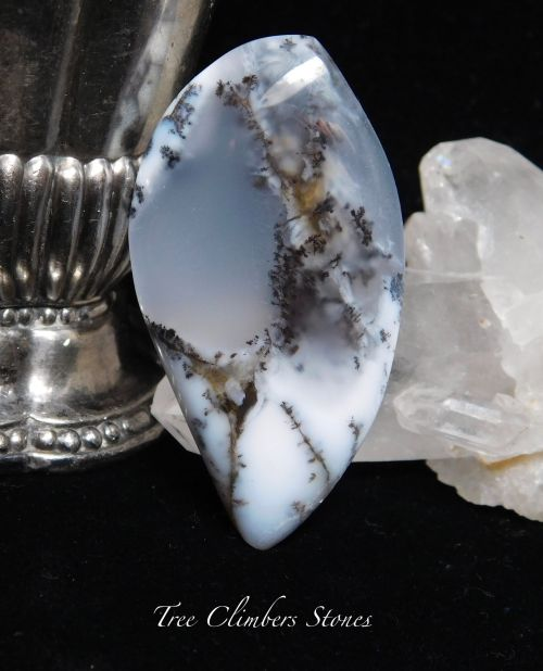 Winter Dreams Dendritic Opal by Tree Climber Stones