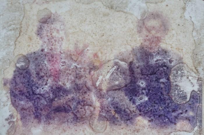 照片上的父亲穿着西装,和母亲并肩坐在椅子上,一脸笑容。