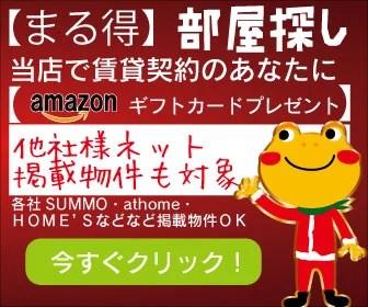 カエルーム(^^♪クリスマスキャンペーン