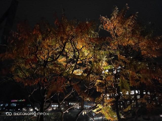 ภาพถ่ายกลางคืน จากกล้อง OPPO Find X