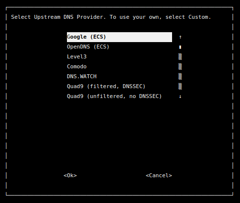หน้าจอการติดตั้ง เพื่อเลือก Upstream DNS Provider