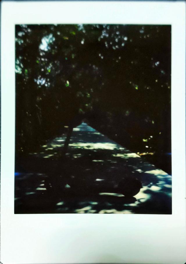 ตัวอย่างภาพถ่ายด้วย Escura Instant 60s เป็นภาพของสกู๊ตเตอร์ไฟฟ้า ที่จอดขวางทางเดิน ที่มีต้นไม้อยู่สองข้างทาง ภาพถ่ายแสงน้อย จึงมืดพอสมควร