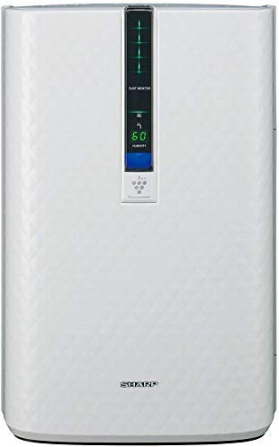 Best air purifier and humidifier