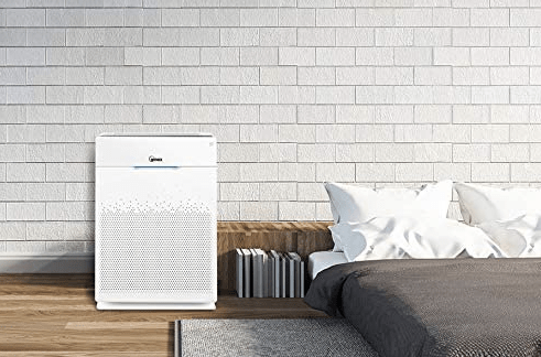 Winix Zero Pro Air Purifier Review