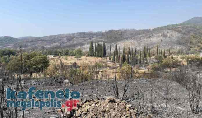 Ενημέρωση για τις φωτιές – Δευτέρα 9 Αυγούστου (video-photo)