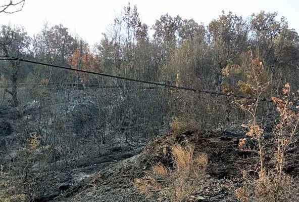 Χρηματοδότηση 250.000 ευρώ στον Δήμο Μεγαλόπολης για την πρόληψη και αντιμετώπιση ζημιών και καταστροφών