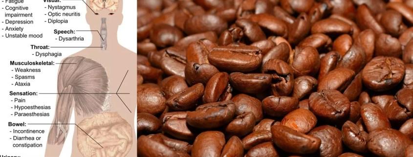 Hilft Kaffee bei Multipler Sklerose?