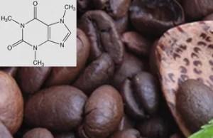 Wieviel Koffein ist im Kaffee enthalten