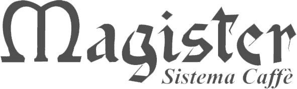 magister logo grey