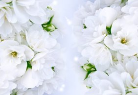 """Romantic Jasmine Bouquet"" by Digifuture on redbubble.com"