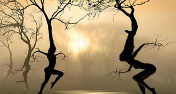 """Dancing Trees"" by Igor Zenin on Fine Art America. (Direct website link embedded within.)"