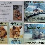 動物園へ行こう!Part.12