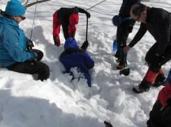 雪中埋没訓練