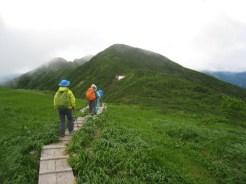 正面守門岳 快適な登山道