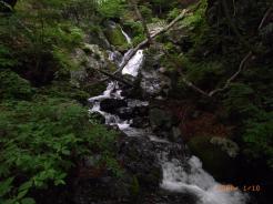 水ノ面沢に沢山ある美しい滝