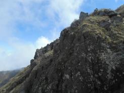 見上げると岩
