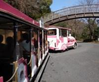 フラワートレインも楽しかった。平日は350円で乗り放題