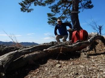 鍋足山山頂大きな松の木が目印