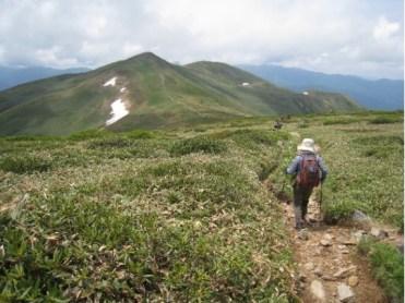 仙ノ倉山から平標山への帰路