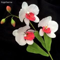 Flowerpaste Orkide på tråd i hvid og pink