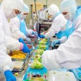【体験談】食品工場のバイトってきつい?高時給な年末年始、短期がおすすめ