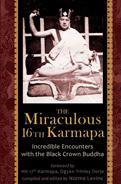 The 16th Karmapa