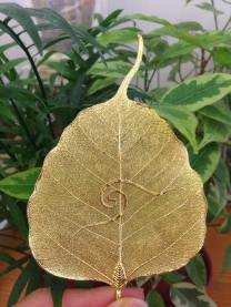 金菩提葉 ∣ Golden Bodhi Leaf