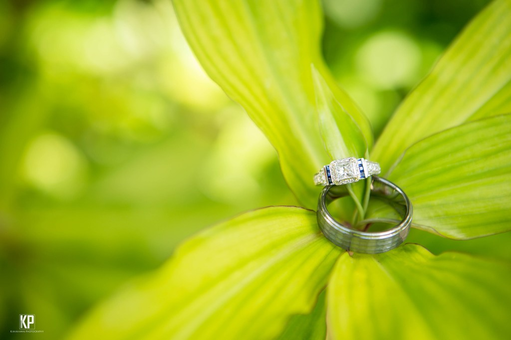 Ti Leaf Rings