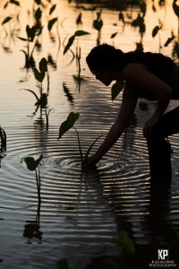 Lyndsey Hariguchi oh Hanalei Taro & Juice Co. planting Kalo (Taro) at sunset on the north shore of Kauai