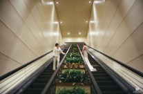 Bride and Bride Escalator Ride