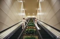 Bride and Bride Escalator Ride