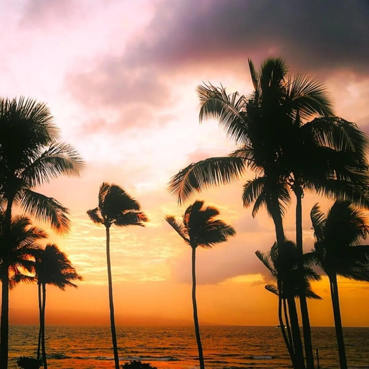Sunset Cruise In Waikiki