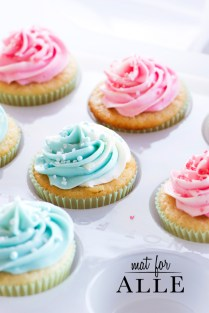 130405_cupcakes