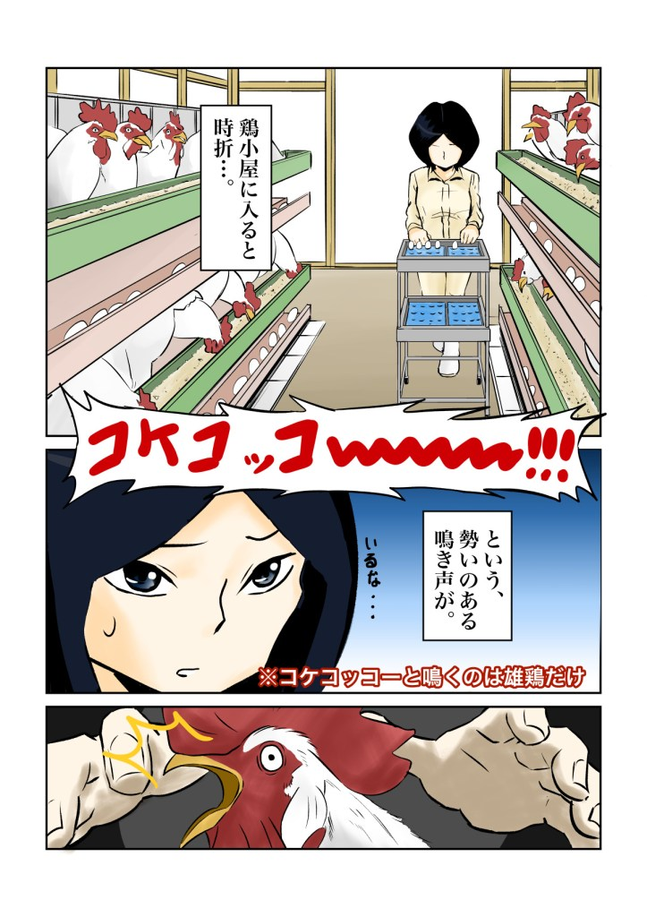 養鶏場 ニワトリ 鶏 雄鶏 卵 餌 ゴミ処理機 処分 漫画
