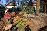 First step toward an urban food forest