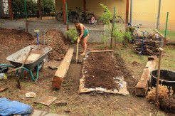 Adding manure and compost