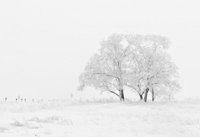 ロシアの四季、長くて暗い冬