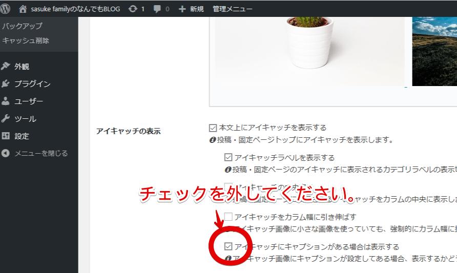 Cocoon設定のキャプション非表示画面②
