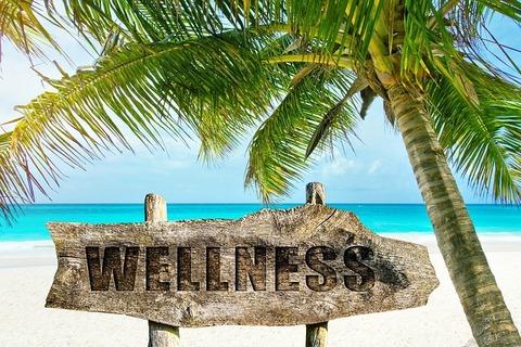 wellness-3330688_640