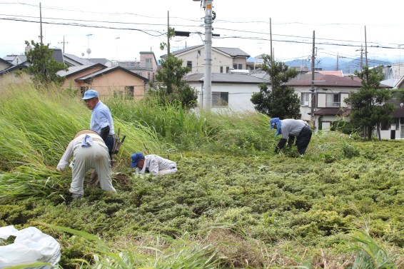 草刈作業_01_50%