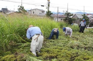 草刈作業_08_50percent